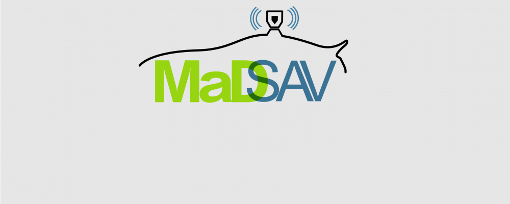 Logo of the MaDSAV project