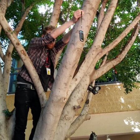 Attaching the camera to a tree to get a real 'bird's eye perspecitve'